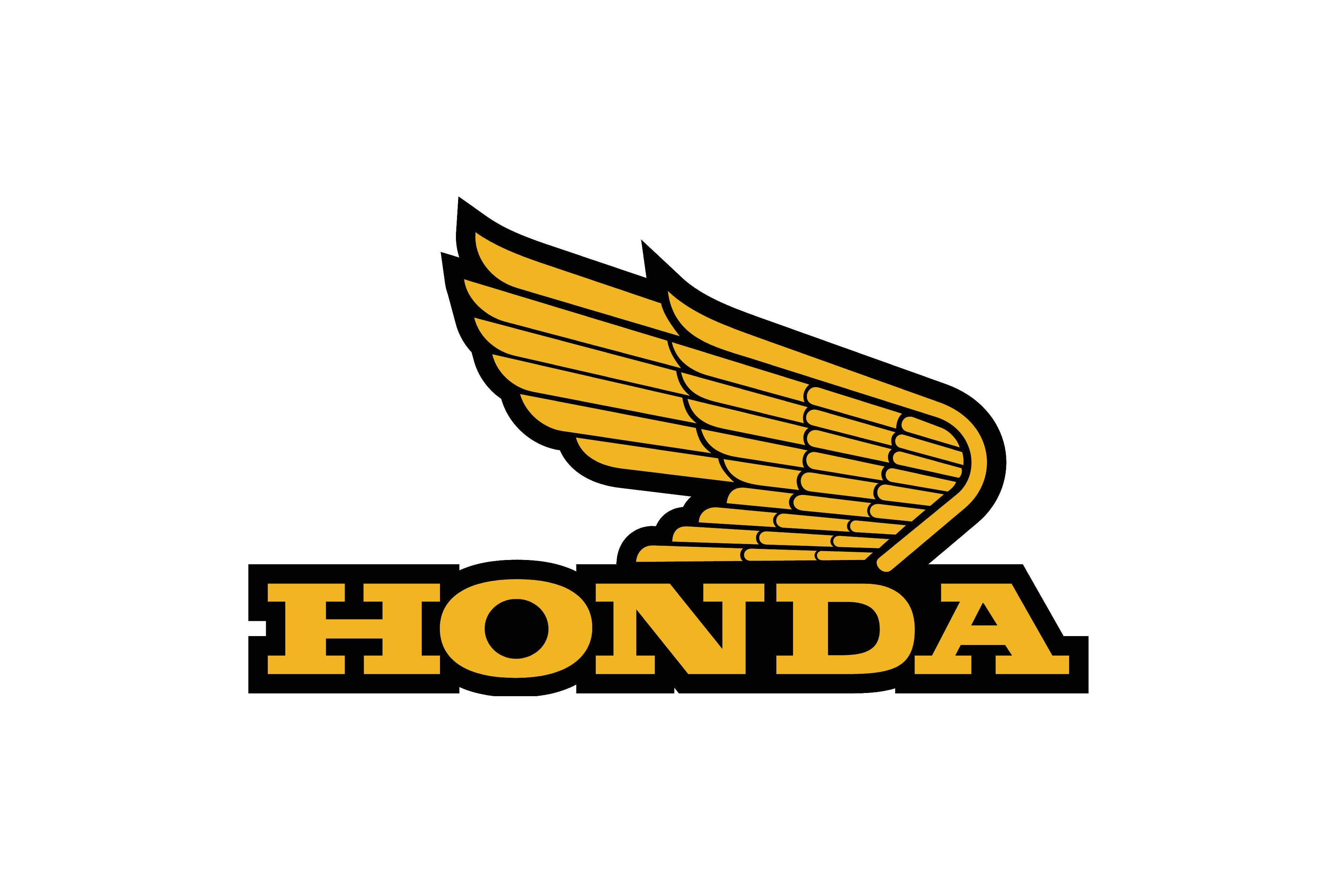 honda gold wing log